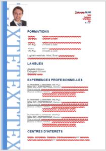 Exemple de CV moderne – Modèle 2