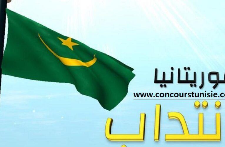 الوكالة التونسية للتعاون الفني تفتح باب الإنتداب للعمل بالجمهورية الإسلامية الموريتانية