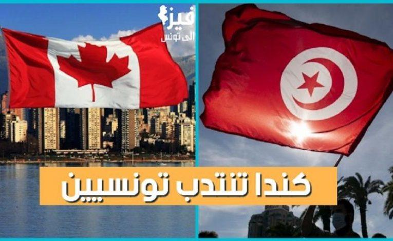 هام / إنتداب تونسيين بكندا : أكثر من 700 عرض شغل في عدة قطاعات .. التفاصيل