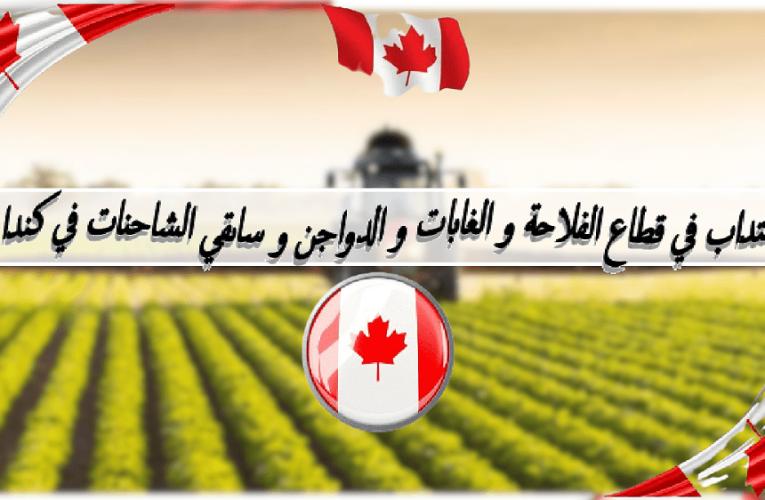 انتداب في قطاع الفلاحة و الغابات و الدواجن و ساىقي الشاحنات في كندا